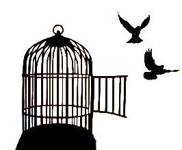cage_bird